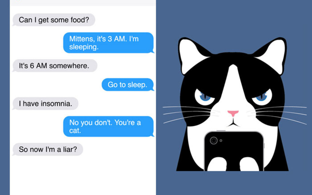 New Comic Alert: 'Texts From Mittens'