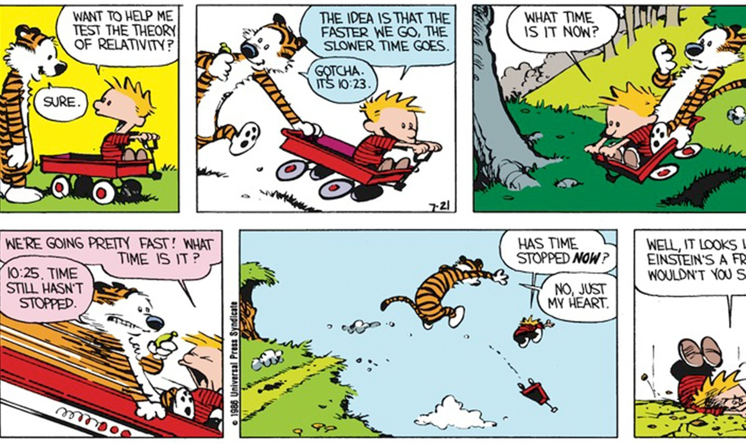 Calvin and Hobbes: Scientific Theory