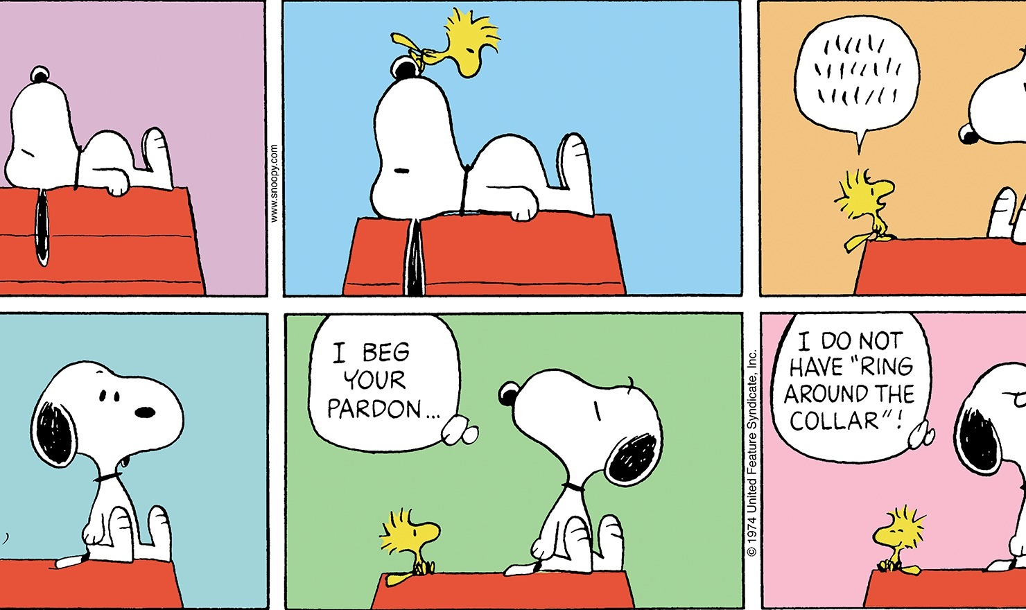 Peanuts: Snoopy and Woodstock