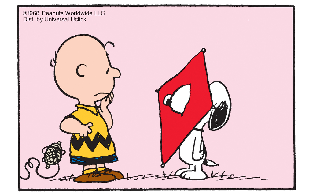 "Peanuts: Kite ""Flying"""