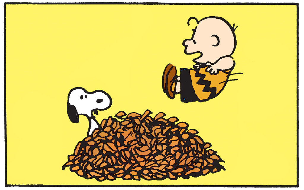 Peanuts: Autumn Leaves