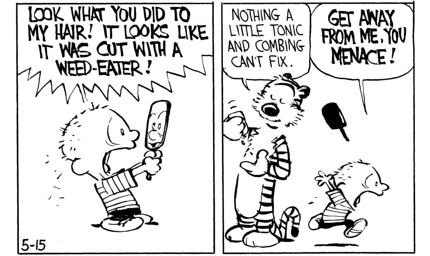 Calvin's Bad Hair Daze