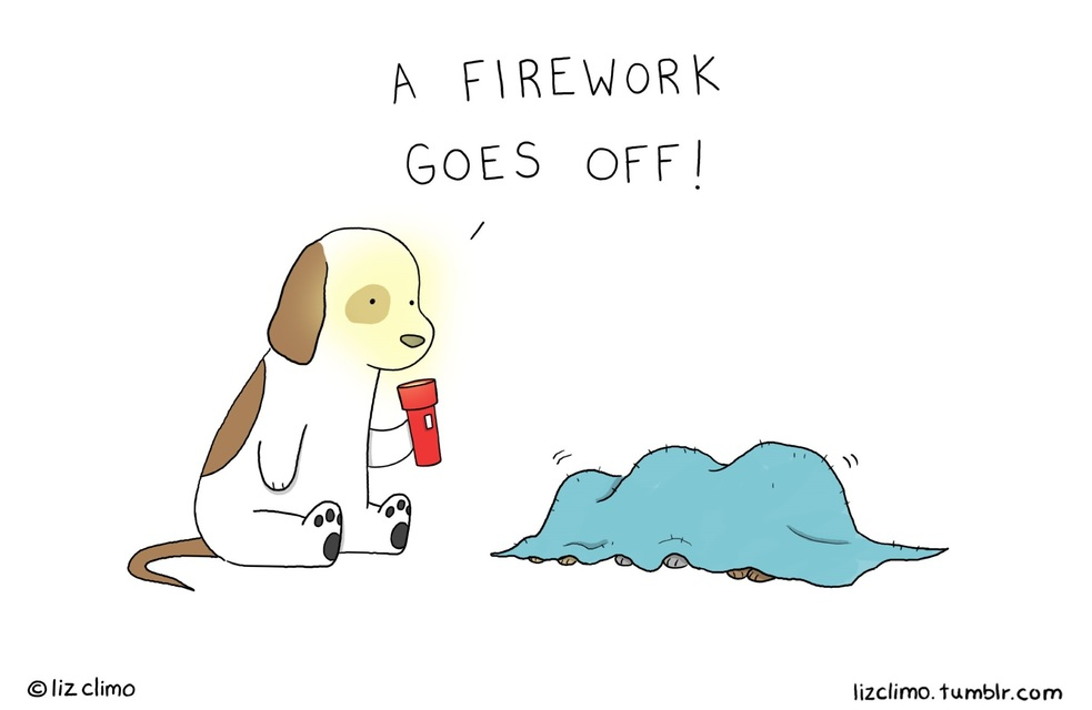 A Friendly Little PSA - Your Dog Hates Fireworks