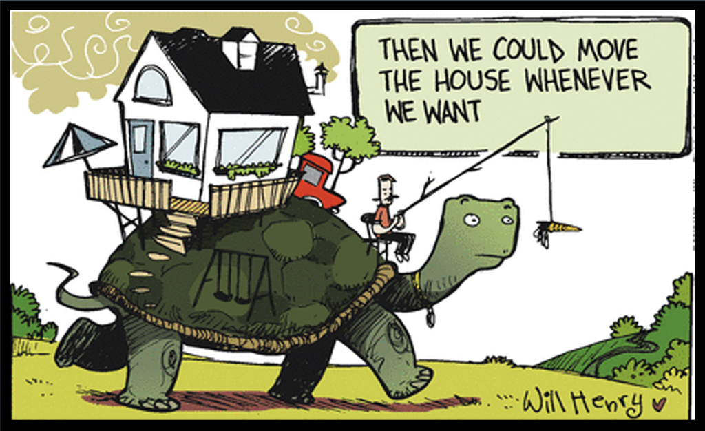 Why Aren't We All Living on Giant Tortoises?