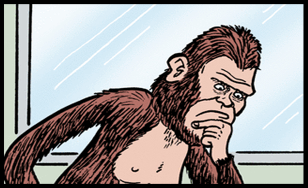 What has Sasquatch so Puzzled Today?