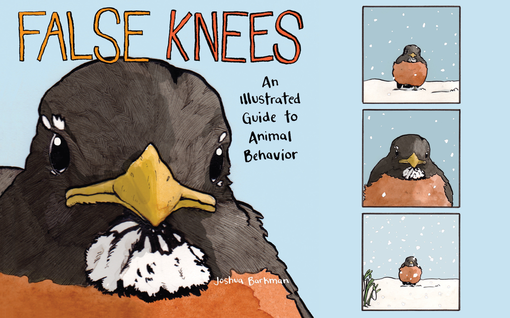 8 Animal Humor Comics From 'False Knees'