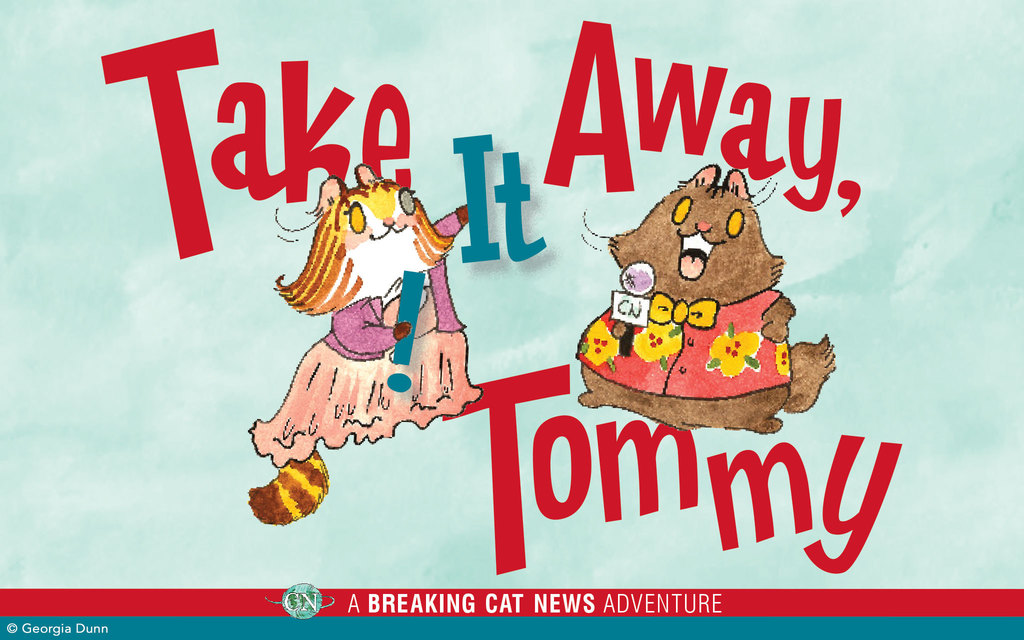 'Breaking Cat News' Presents 'Take It Away, Tommy!'
