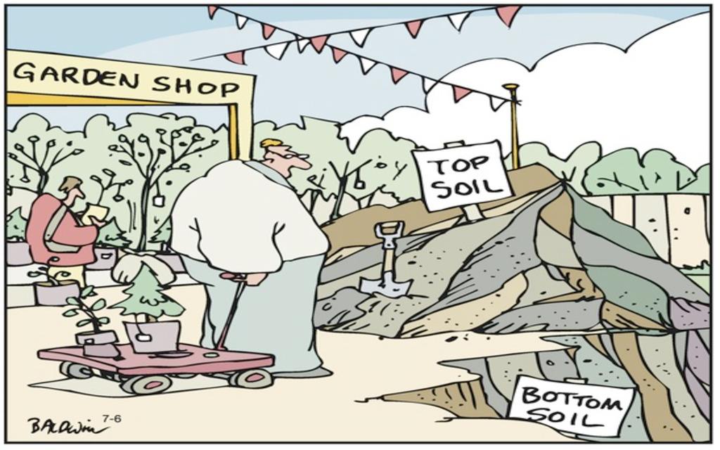 7 Comics to Get You Gardening—Even in Fall!