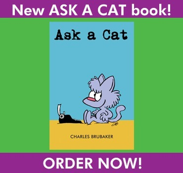 Ask a Cat The Fuzzy Princess book