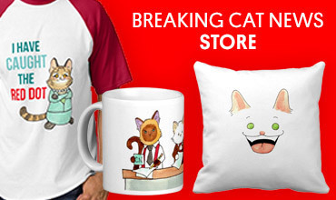 Shop the Breaking Cat News Store on Zazzle!