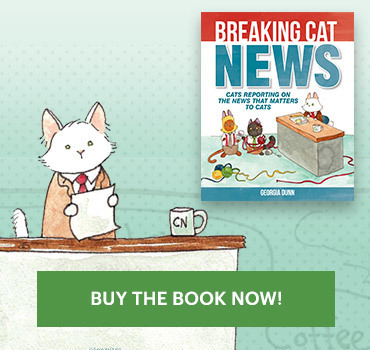Breaking Cat News Buy Now
