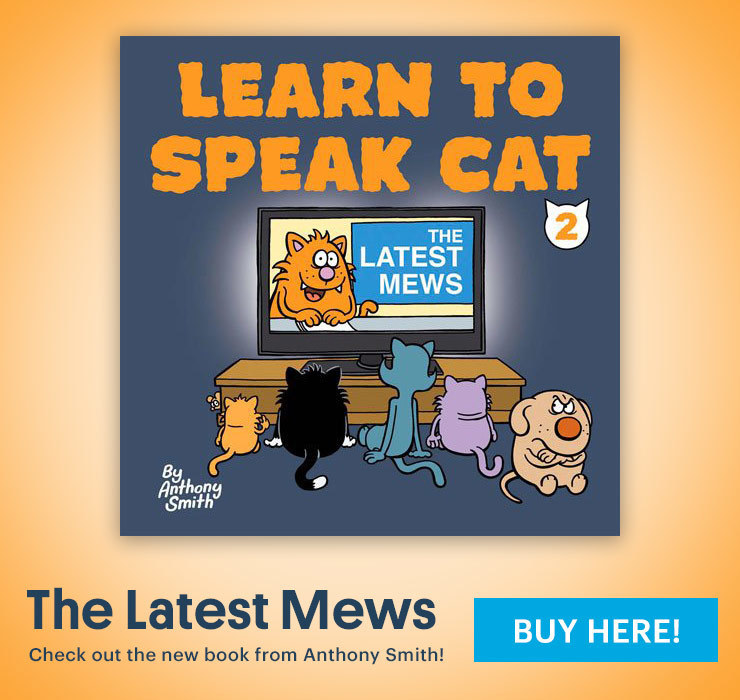 Learn to Speak Cat the Latest Mews