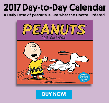 Peanuts Day to Day Calendar 2017