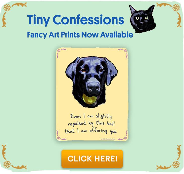 Tiny Confessions prints