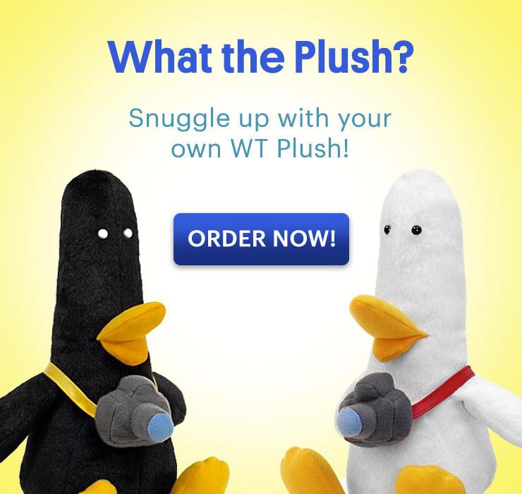 W.T. Duck Plush
